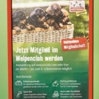 ANGEBOT - Fressnapf Welpenclub